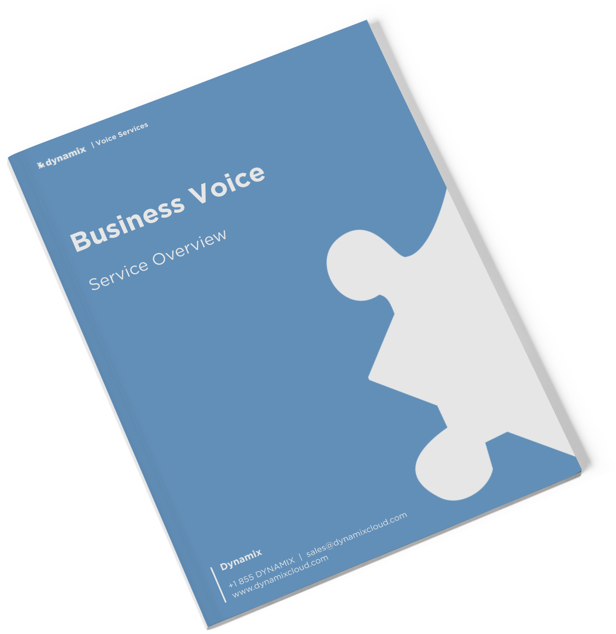 business-voice-product-brochure